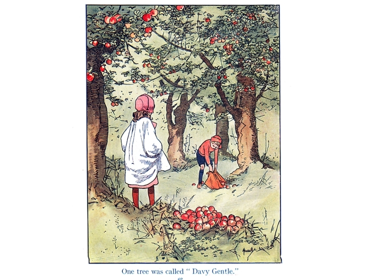 Children collecting windfall apples. Illustration by John Harrap.