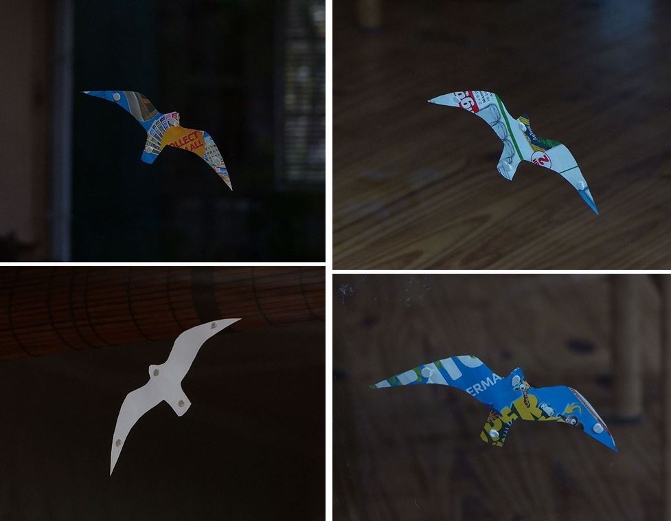Cutout bird shapes to make window panes visible to flying birds