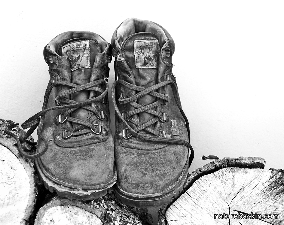 Wanderlust for the outdoors symbolized by hiking boots