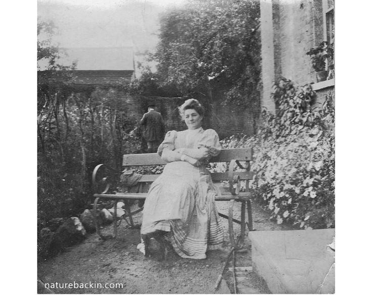 Leominster garden