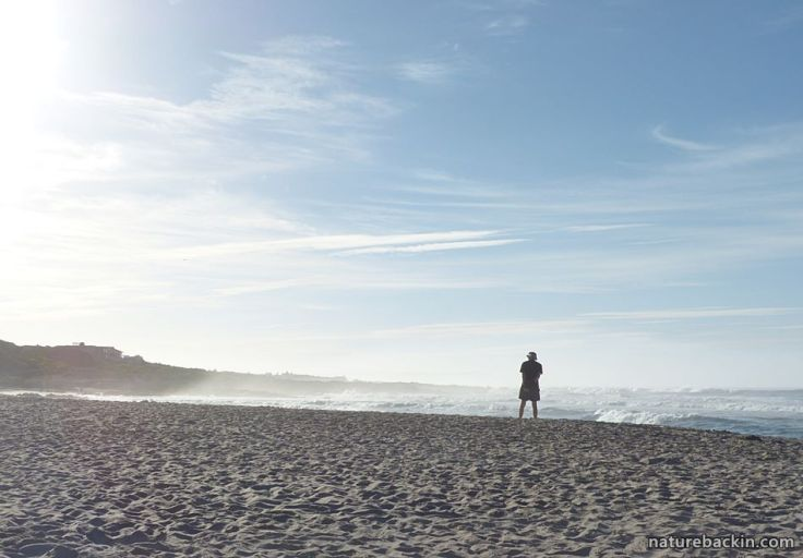Suburban seaside 6