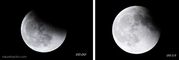 2f Moon eclipse
