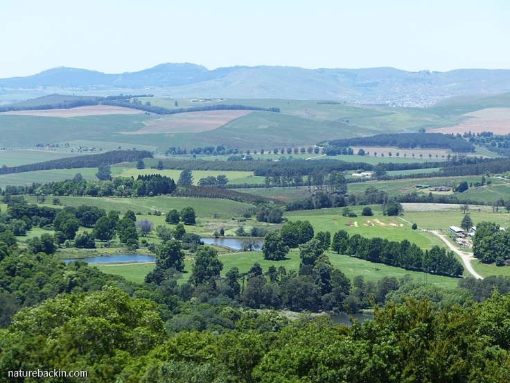 Agricultural lands in KwaZulu-Natal Midlands