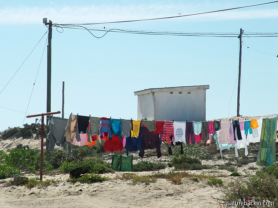 A small town in South Africa, Port Nolloth on the north-western coast.