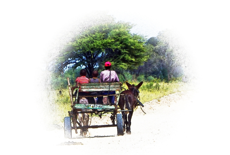 Donkey cart at Bray, North West Province, South Africa