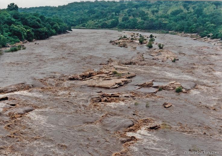 10 Mozambique-Pungwe-River