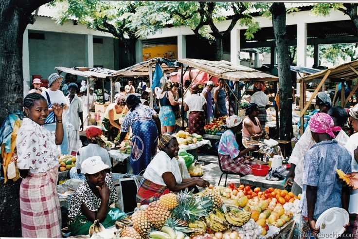 13 Mozambique-market
