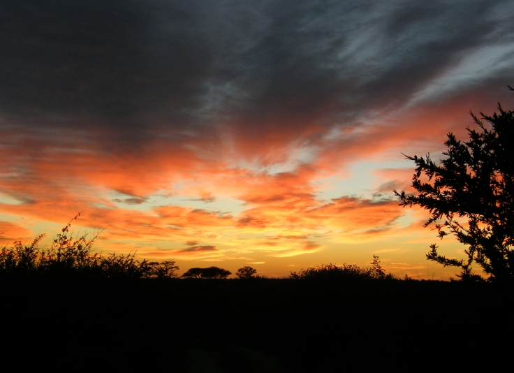 Sunrise photographed at the Central Kalahari Game Reserve, Botswana
