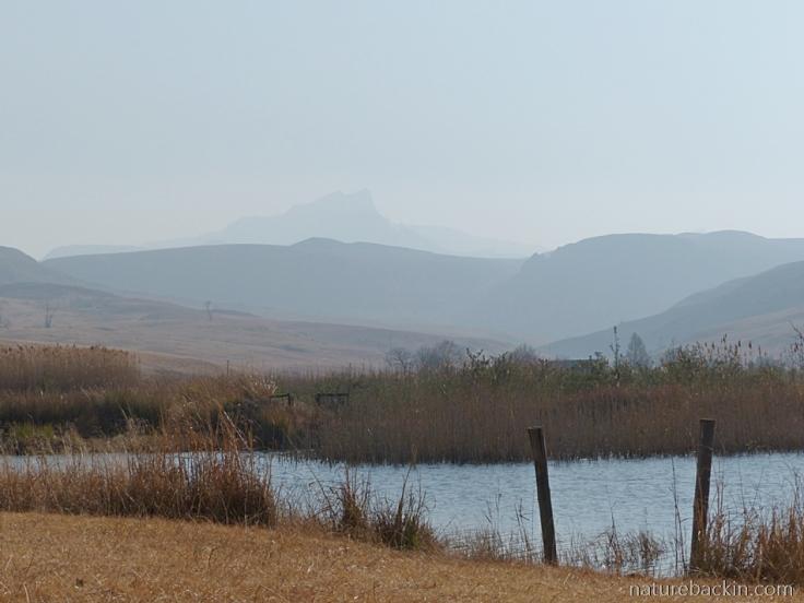 Kamberg-Nature-Reserve-dam