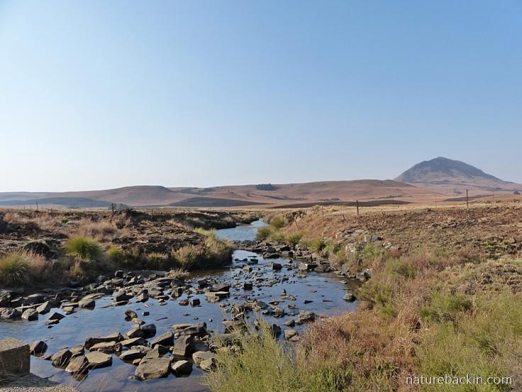 Mooi-River-Kamberg