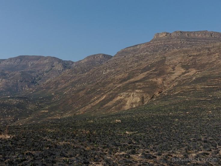 Kamberg-Nature-Reserve-4