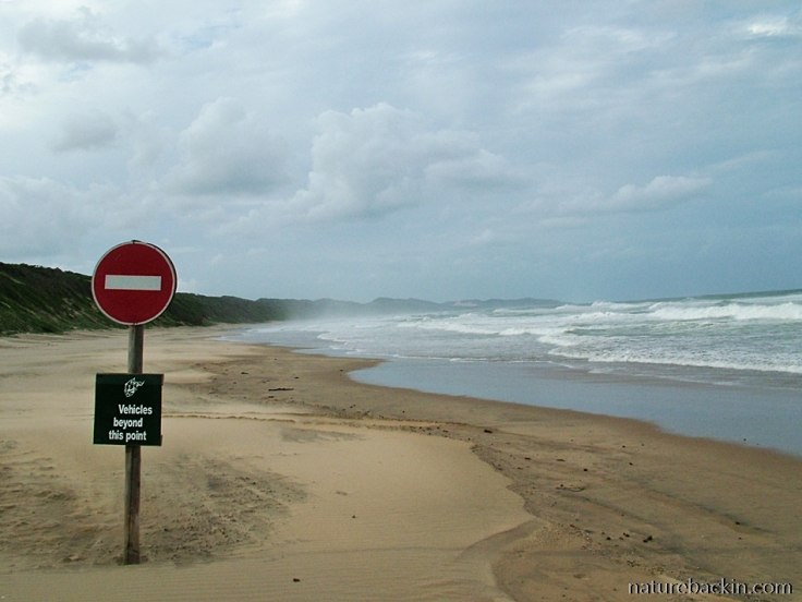 Limits to beach driving in nature reserve on Maputoland coast, South Africa
