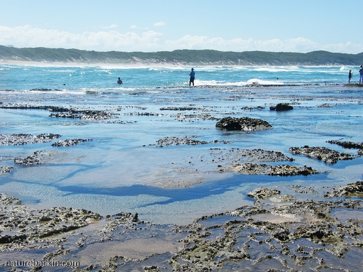 View of Sodwana Bay from the rock pools