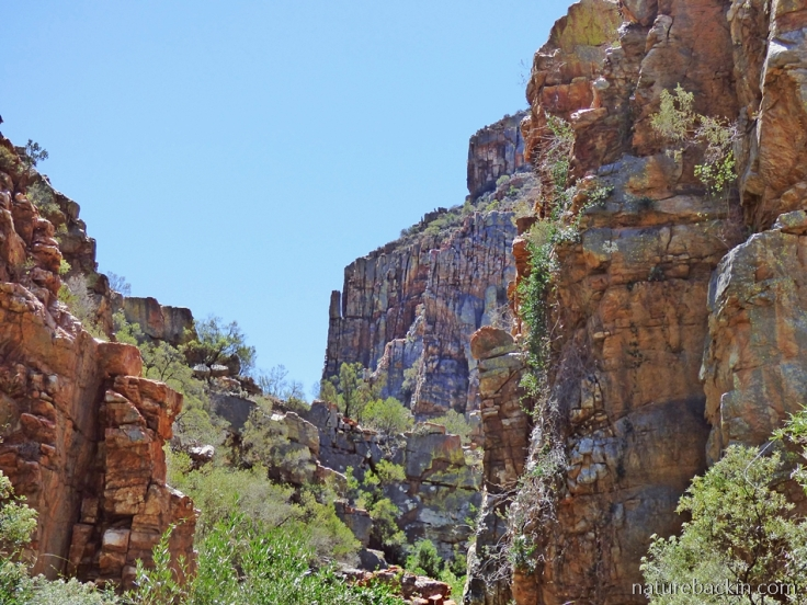 Sandstone cliffs at Gamkaberg Nature Reserve