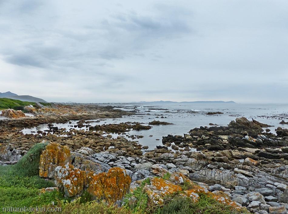 View from Onrus coastal path