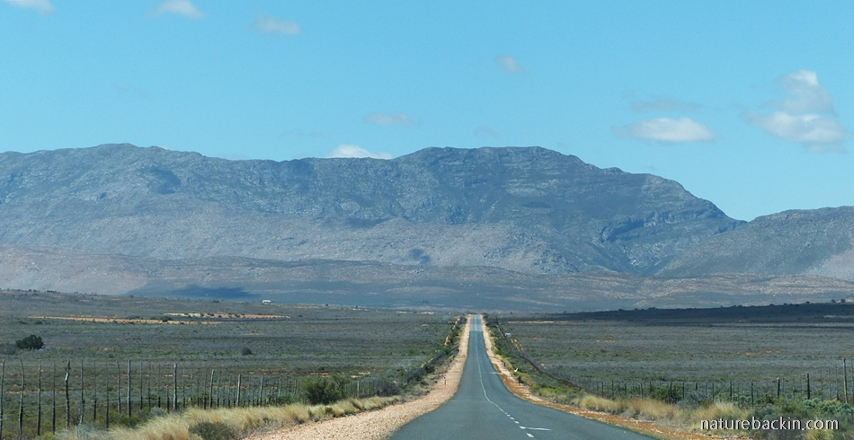 Road to Swartberg mountains