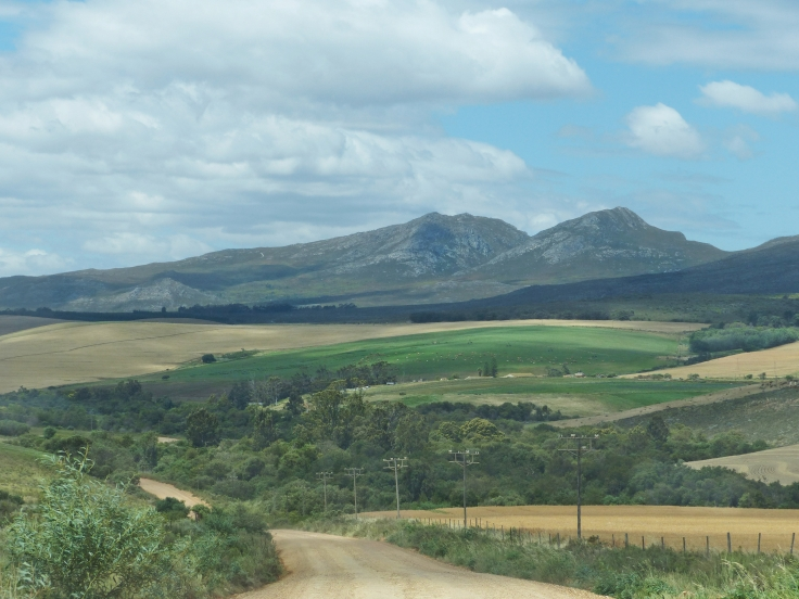Farmlands-Western-Cape