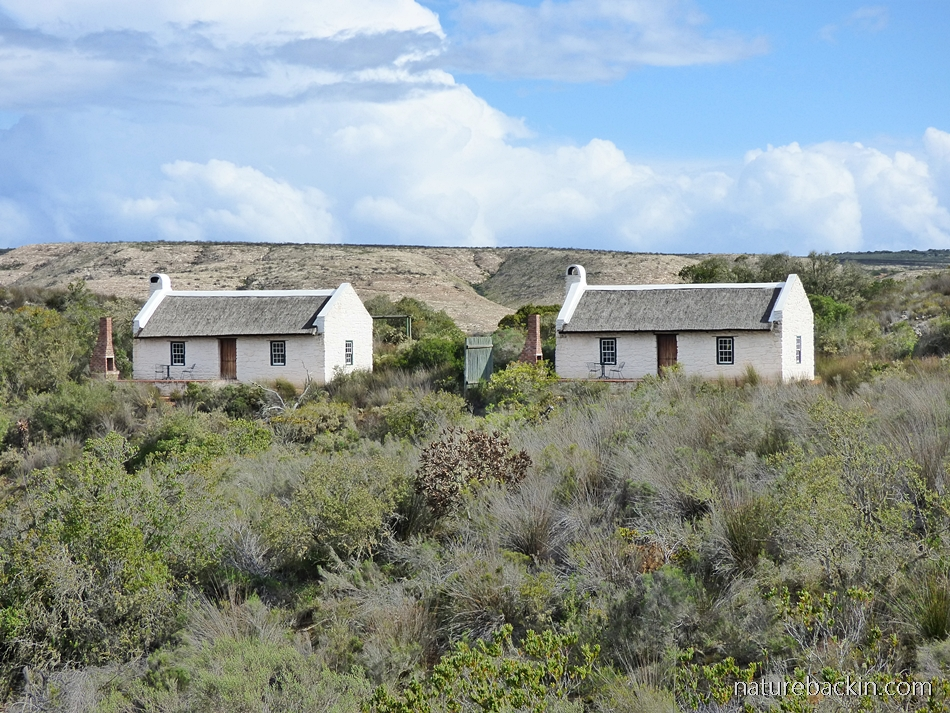Accommodation at Wild Rescue Nature Reserve, Western Cape