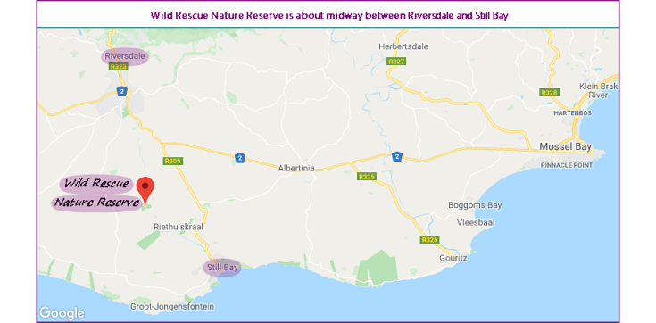 Map showing location of Wild Rescue Wildlife Rehabilitation and Nature Reserve, between Riversdale and Still Bay