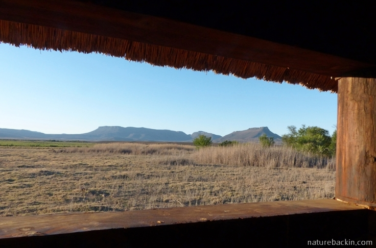 View of the dry Nqweba Dam from the bird hide at Camdeboo National Park, South Africa