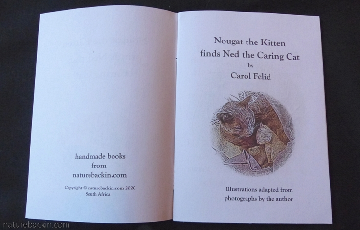 Title page of the storybook Nougat the Kitten finds Ned the Caring Cat