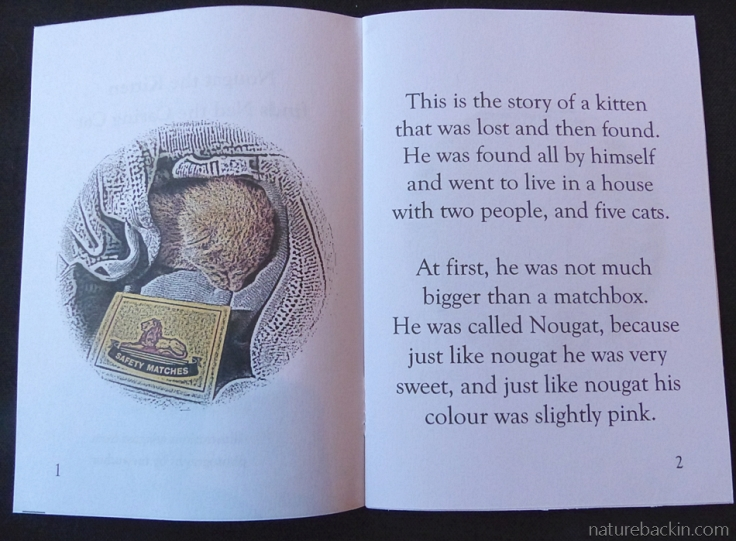 First pages of the storybook Nougat the Kitten finds Ned the Caring Cat