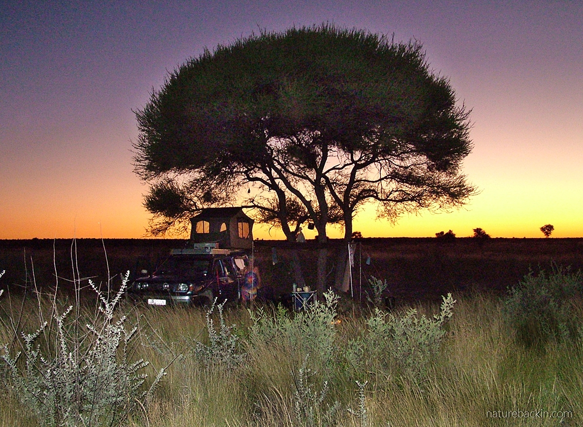 Phokoje campsite at sunset, Central Kalahari Game Reserve, Botswana