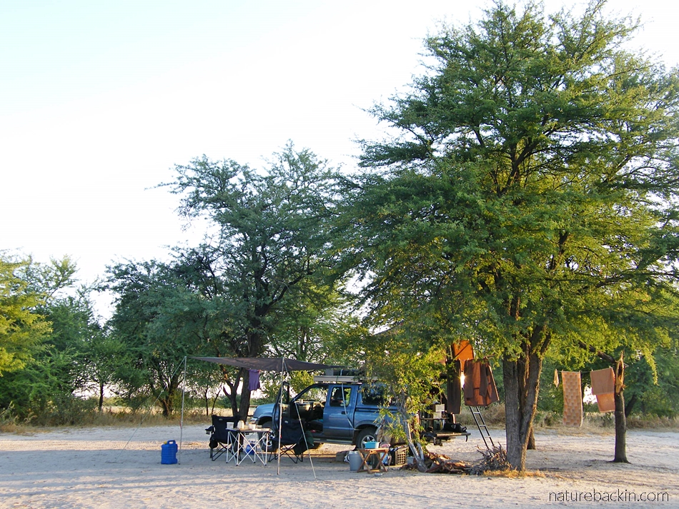 One of the Kori campsites, Central Kalahari Game Reserve, Botswana