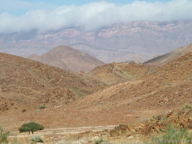 Mountains at Richtersveld National Park