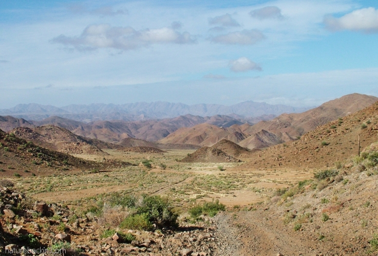 Landscape, Richtersveld National Park, South Africa