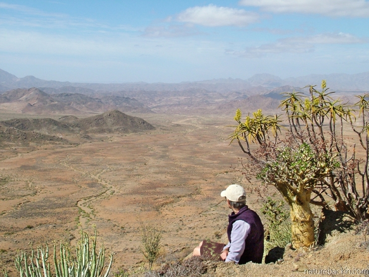 Viewpoint, Richtersveld National Park, South Africa