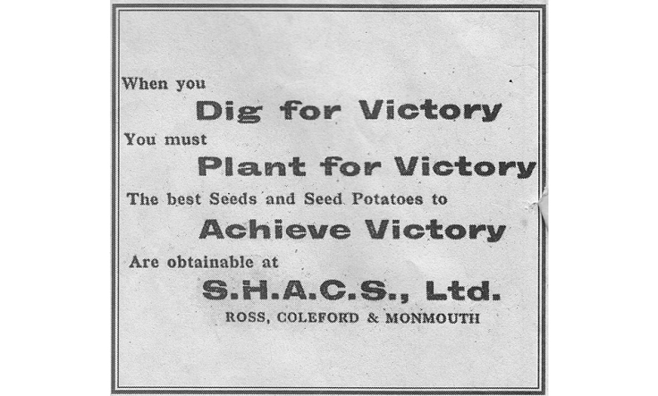 World War 2 advert promoting the Dig for Victory campaign