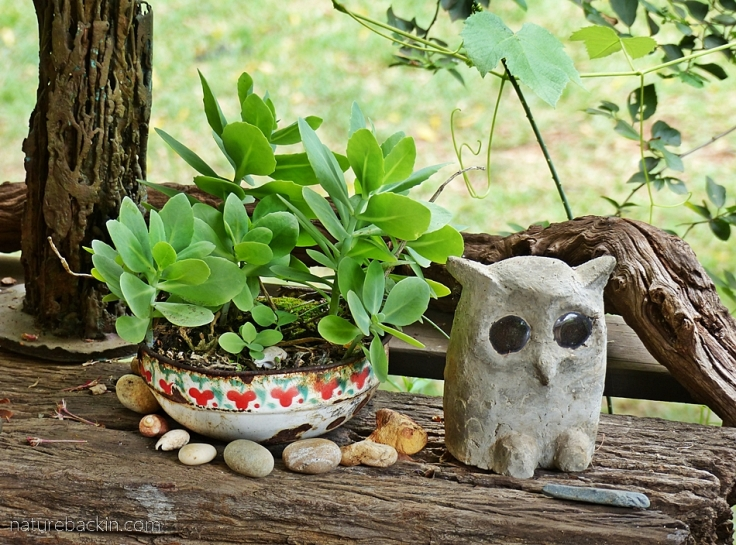 Concrete owl and potted plants
