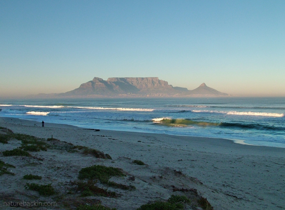 View of Table Mountain, Cape Town, from Blougbergstrand