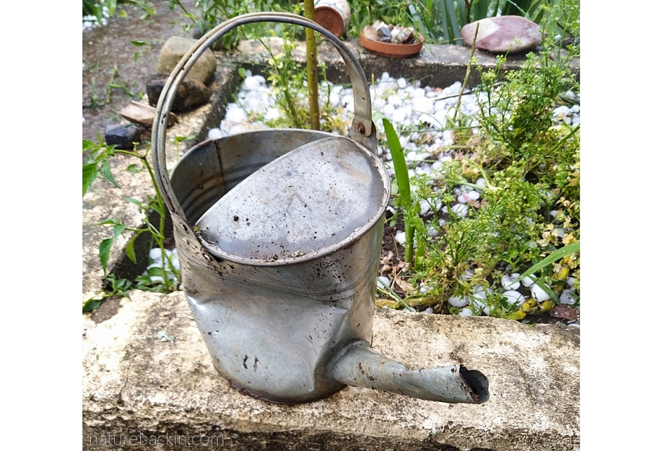 Watering can damaged by hail