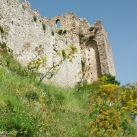 Naturebackin went to Greece: Part 1 Sparti and Mystras