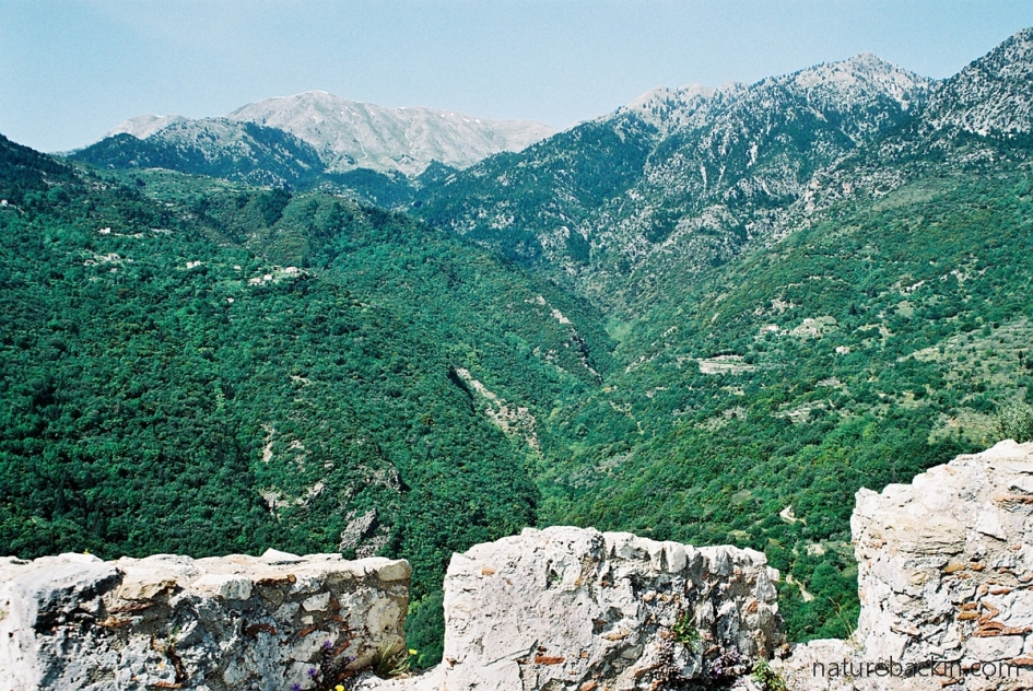 View of the Taygetos mountains from the Kastro at Mystras, Greece