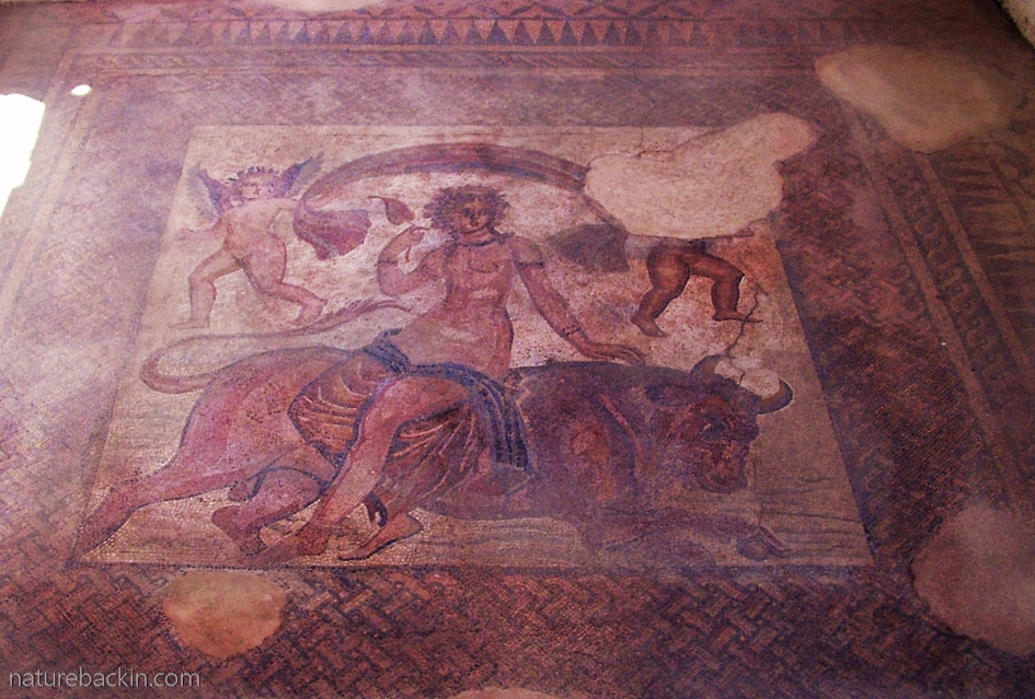 Roman mosaic of Europa and the bull, in Sparti