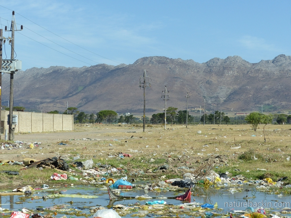 Litter in a vacant lot, Western Cape, South Africa