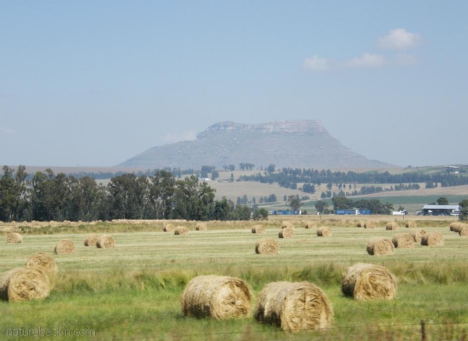 Farmlands, KwaZulu-Natal