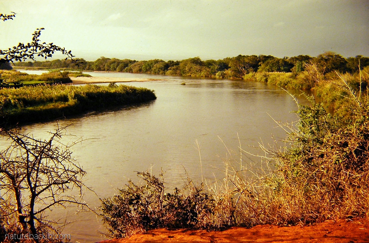 View of the Great Usutu River from Red Cliffs, Ndumo Game Reserve, KZN