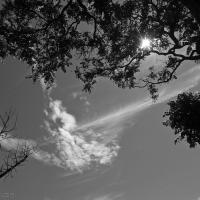Wordless in the aftermath: KwaZulu-Natal July 2021